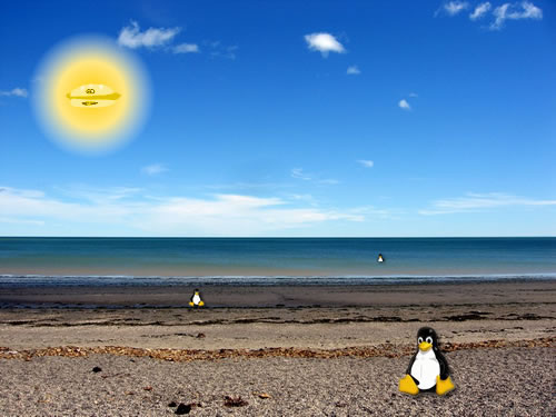 Beach Penguins